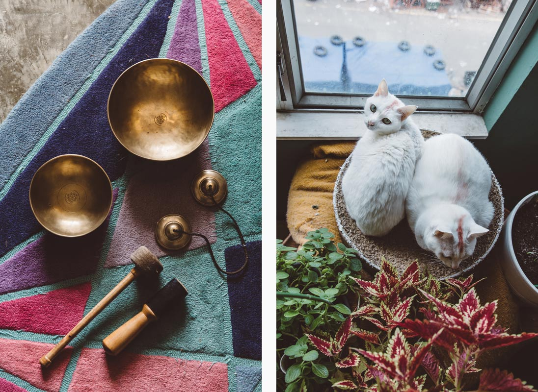 Hong Kong artist Shane Aspegren's studio includes sound instruments and his two cats