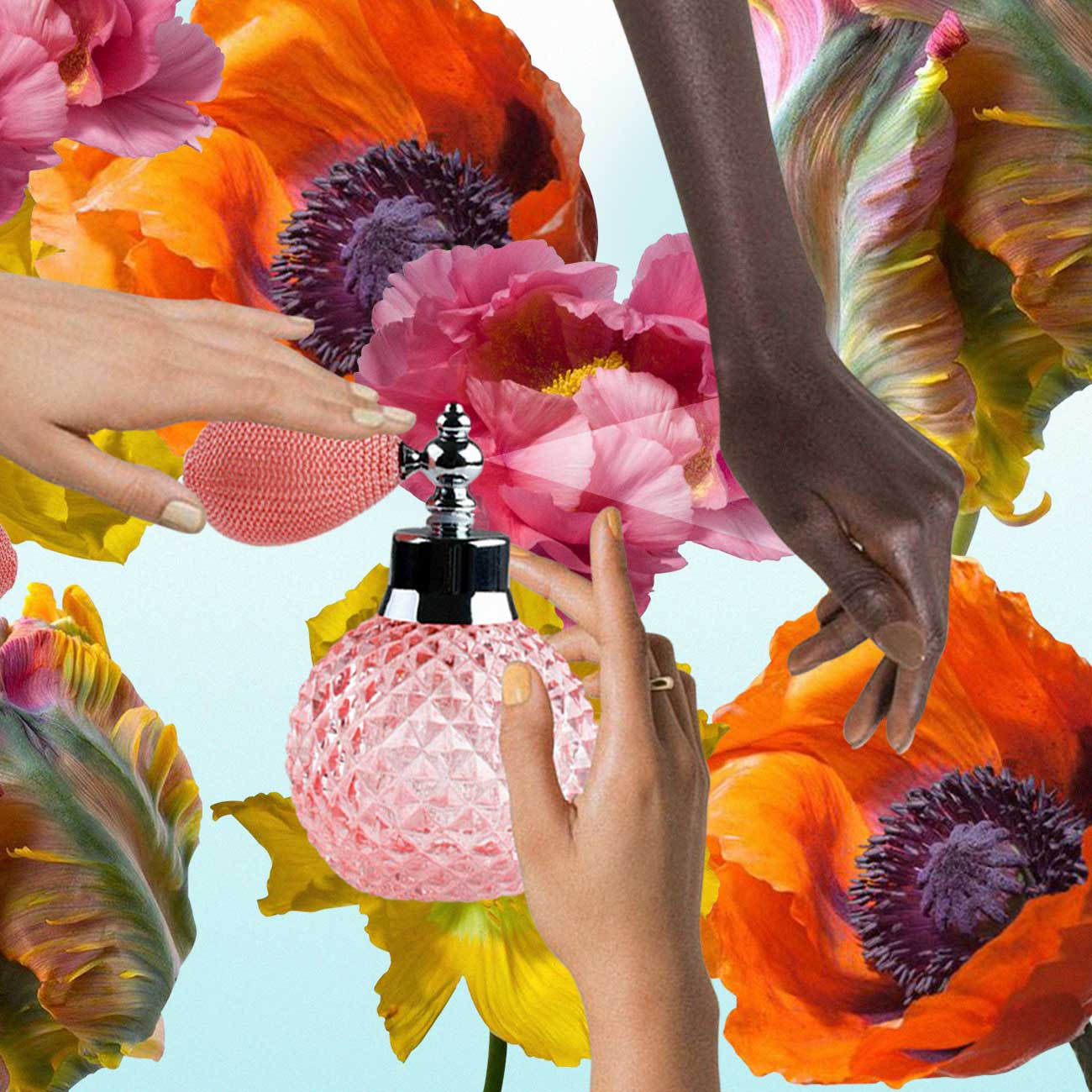 A collage of floral elements illustrating scents