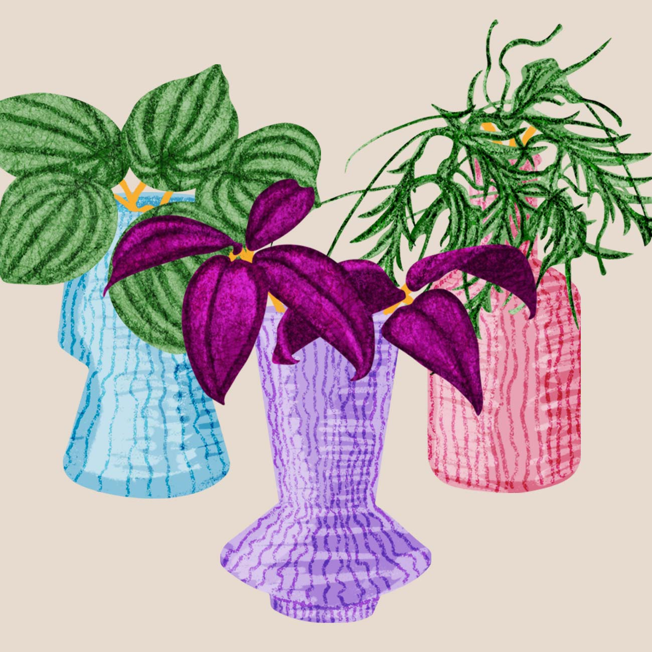 An illustration of houseplants for Pacific Place Hong Kong