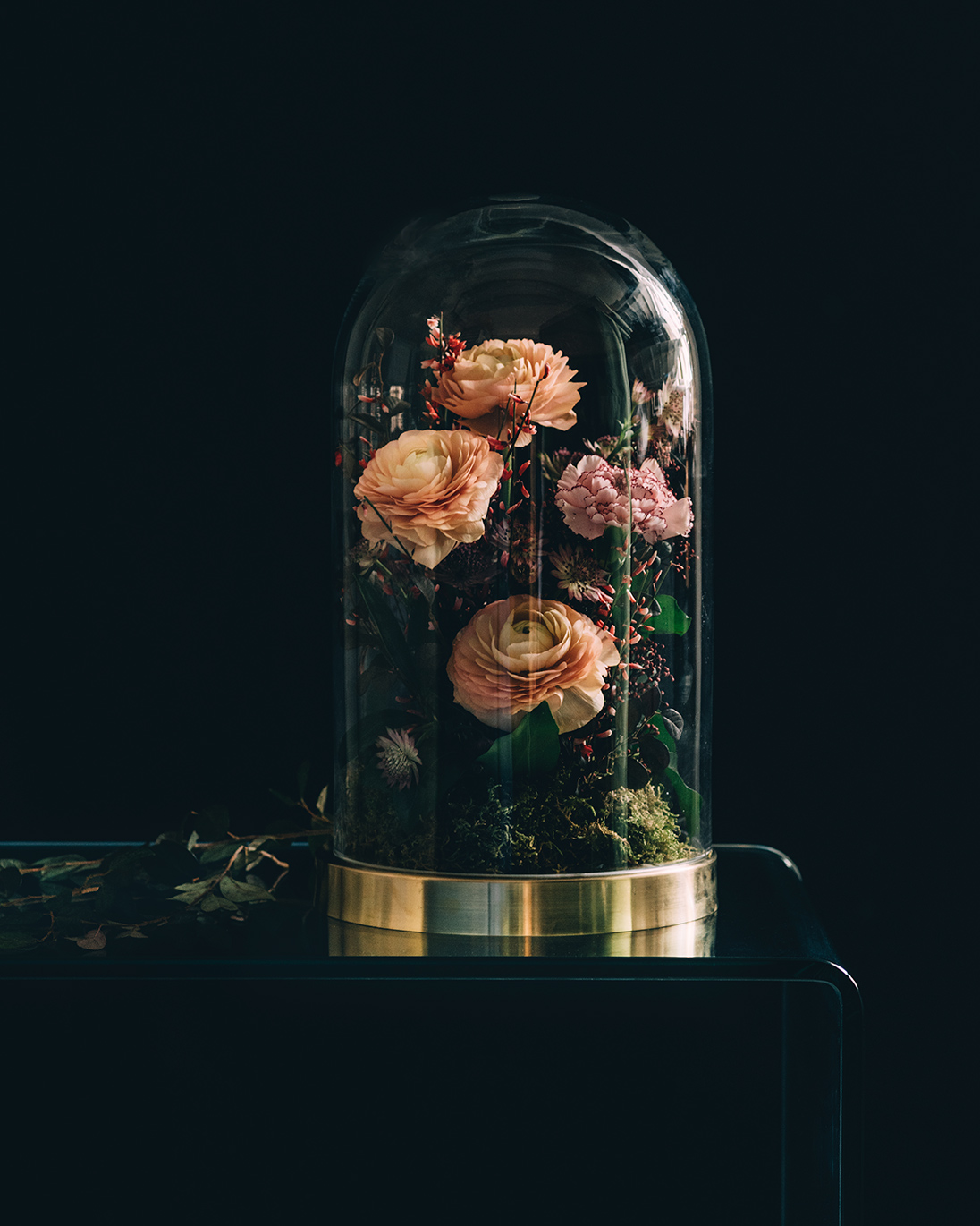 An unexpected arrangement of plump ranunculus and fresh carnations arranged within a gold-rimmed bell jar